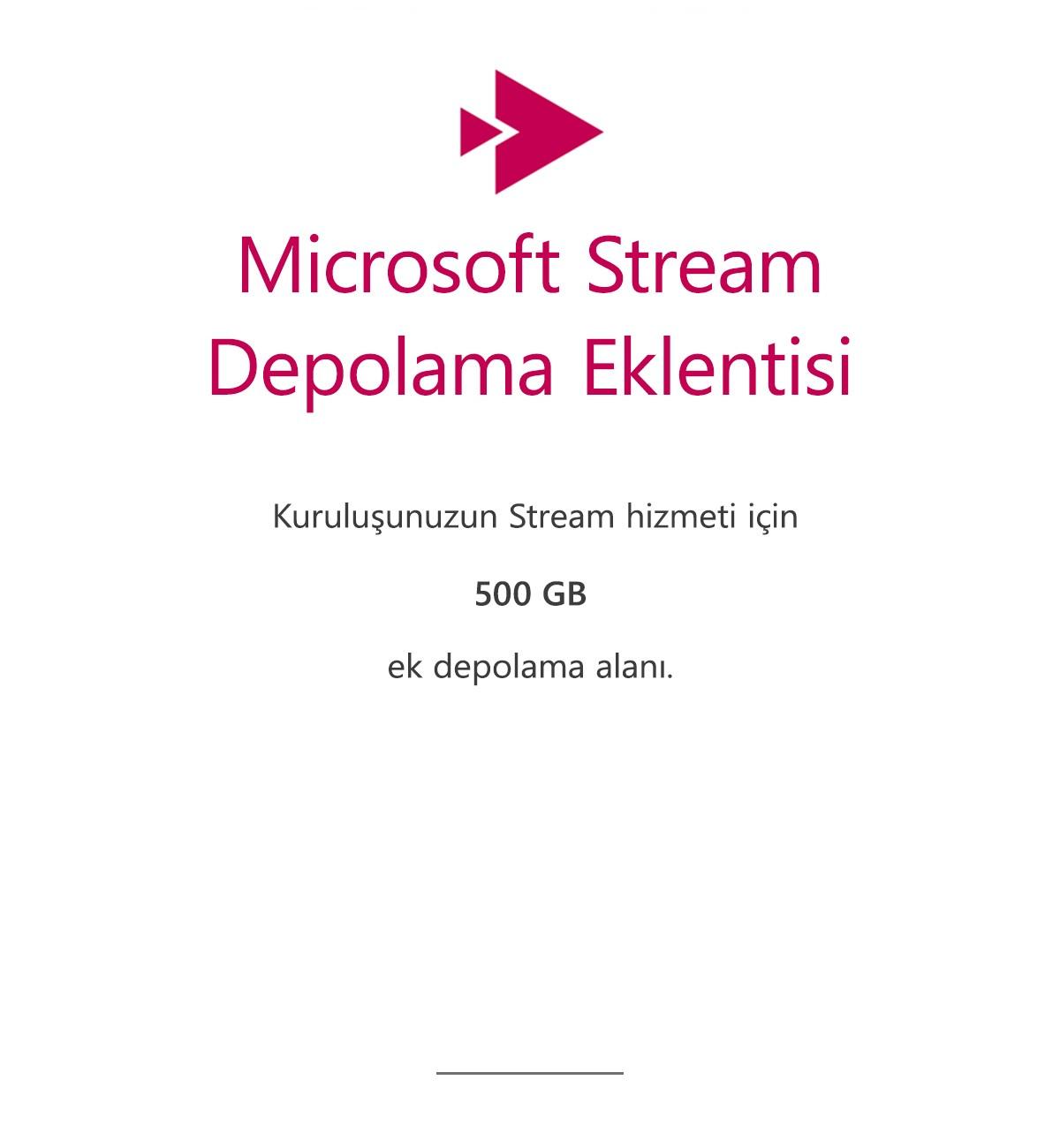 Microsoft Stream Depolama Eklentisi - 500 GB